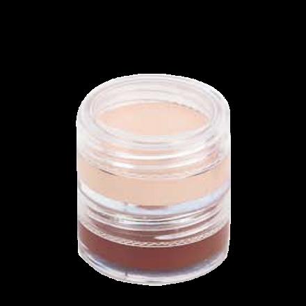 Contour Shade Kit (2 shade)